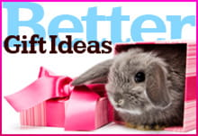 Magazine Subscription Gift Ideas for Easter